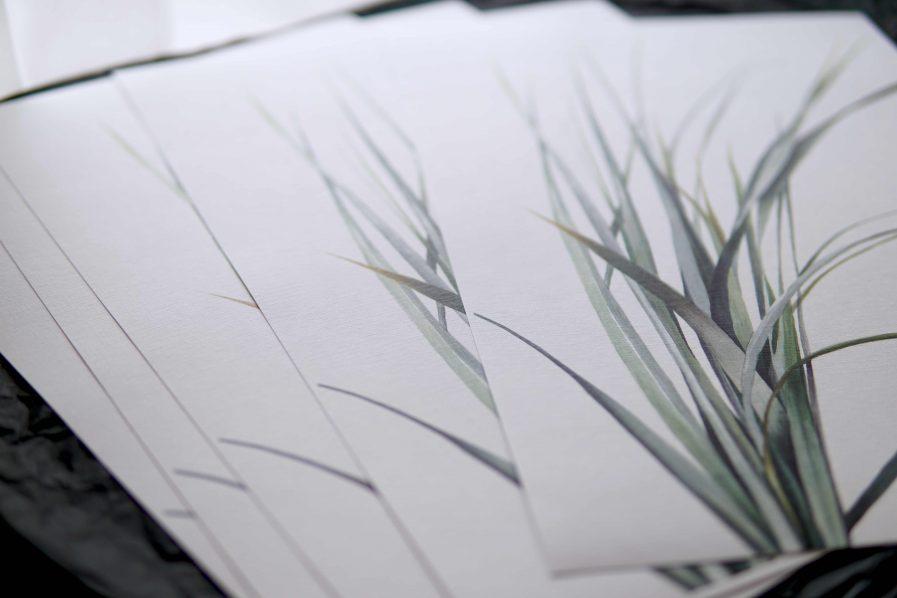 Botanical watercolour poster print LYME GRASS