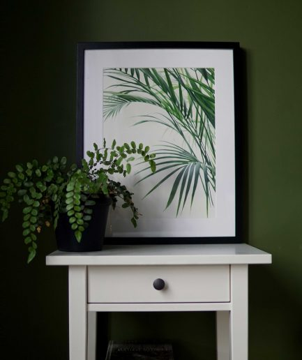 Botanical watercolour poster print Bamboo palm No. 2