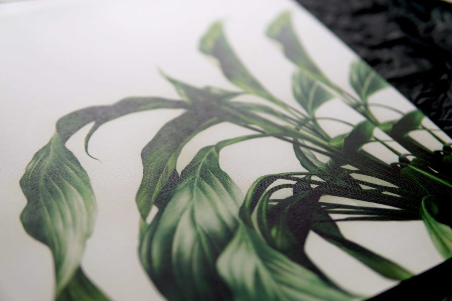 Botanical watercolour poster print Spathiphyllum