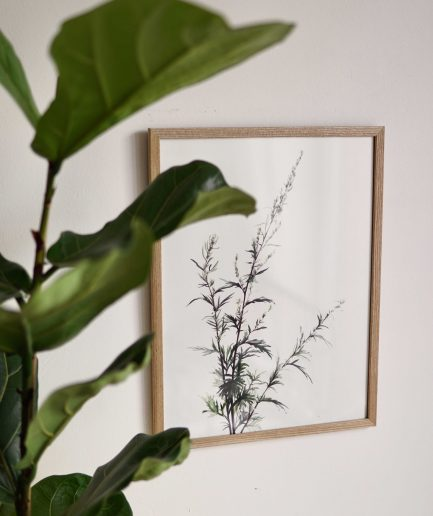 Botanical watercolour poster print VIBURNUM